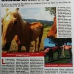 """Article """"Info mag"""" sur un cas de maltraitance à Clermont-Ferrand"""